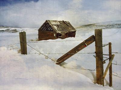 Drafty Cabin