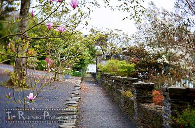 Castell Duedraeth Terraced Garden