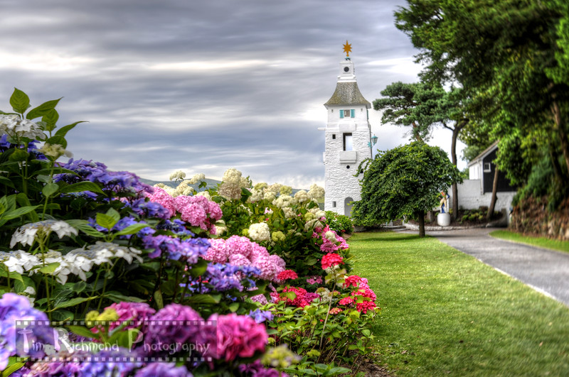 The Soft Collection - Hydrangeas Towards Observatory Tower