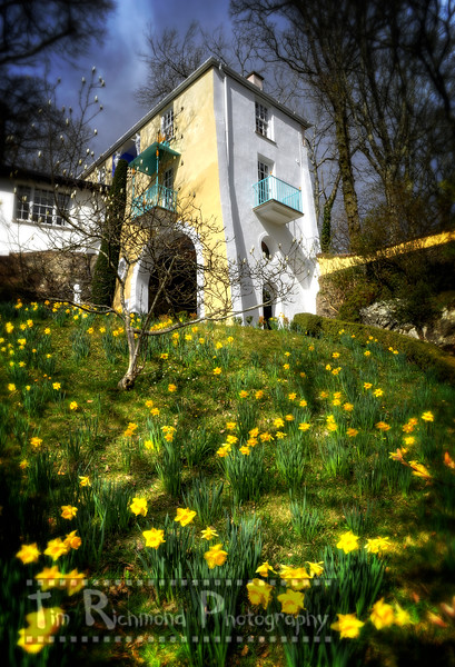 Gate House & Daffodils
