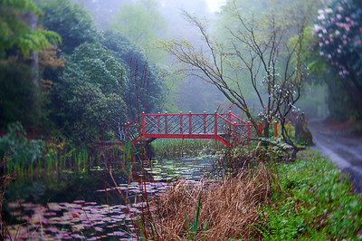 Mist Over The Chinese Bridge