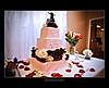 Palmer Cake