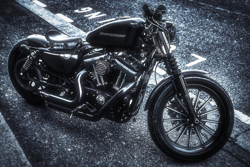 Harley Blues