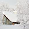 Swedish Snow 5