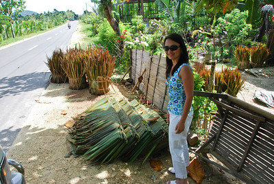 With Nipa to make into roofs of Nipa huts