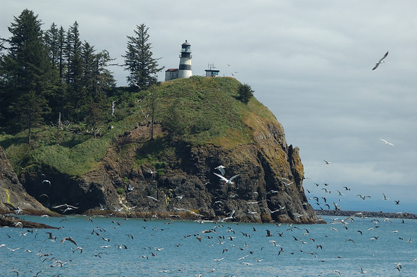 Cape Disappointment - Aug 8th, 2010