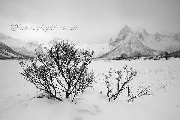 Austvågøya Snow 2