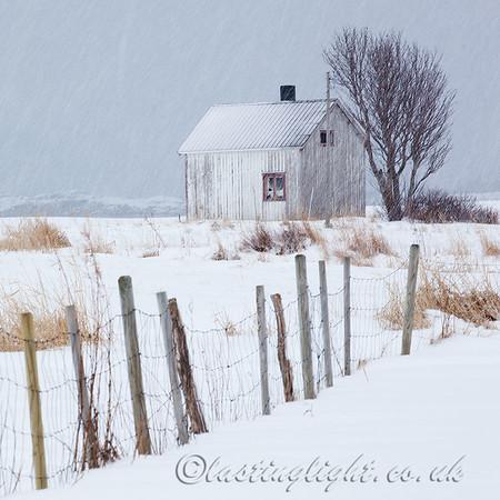 Derelict in Snow