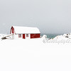 Barn and Blizzard