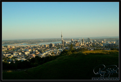 Auckland City Center from Maungawhau (Mount Eden)