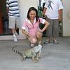 Cherrie and the Iguana