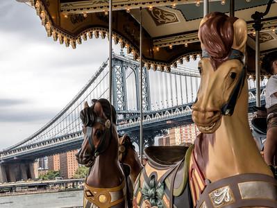 Dumbo Horses