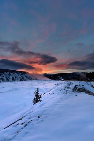 Dawn, Mammoth Hot Springs