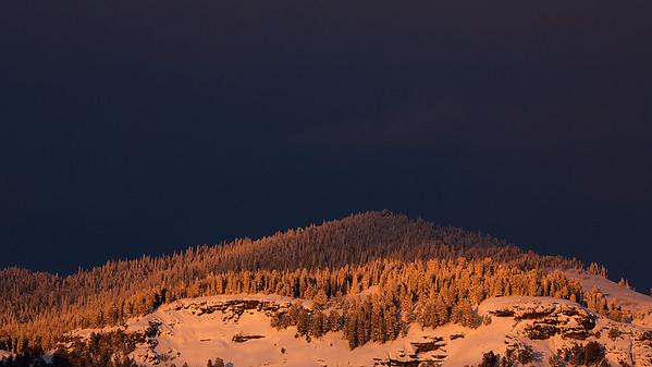 Lamar Valley View