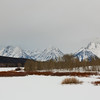 Oxbow Bend, Winter