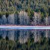Quiet Lake Siskiyou Reflections