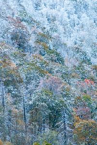 Shenandoah Snow