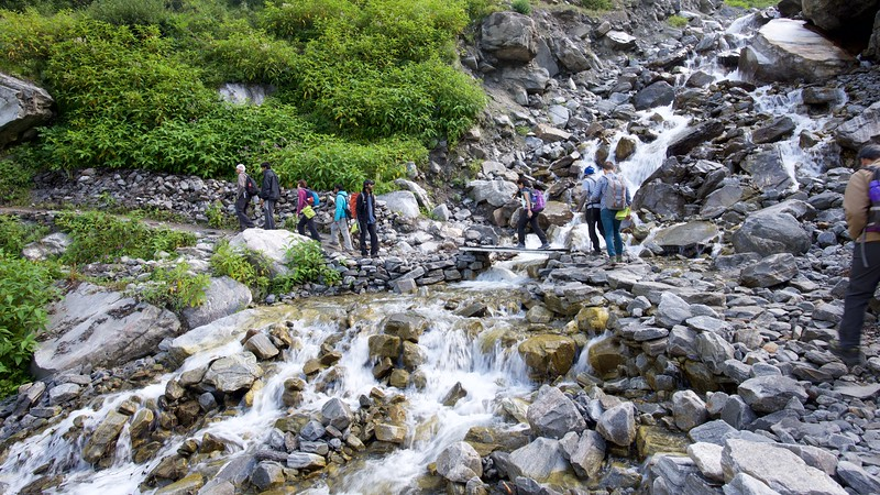 Shikha crossing a stream over a makeshift bridge.
