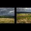 Baildon Moor 3rd August 2017