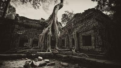 The Lost City of Angkor