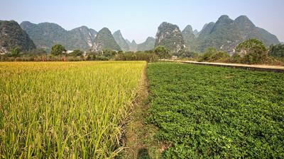 Yima, Yangshuo