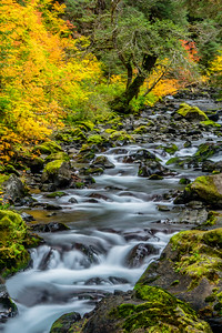 Sul Duc River Autumn