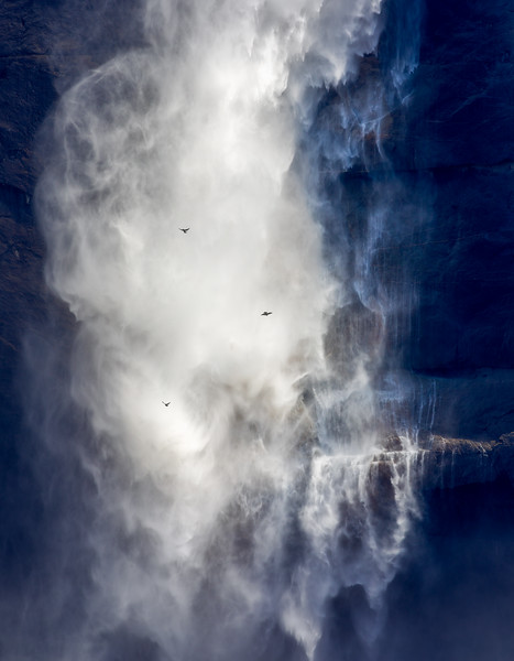 Swallows in Flight, Upper Yosemite Fall