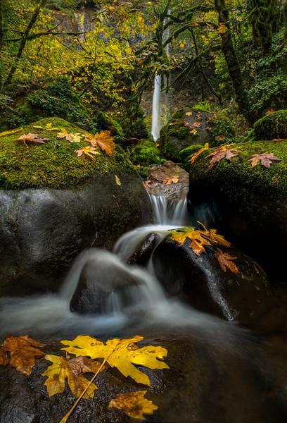 Fall and waterfalls