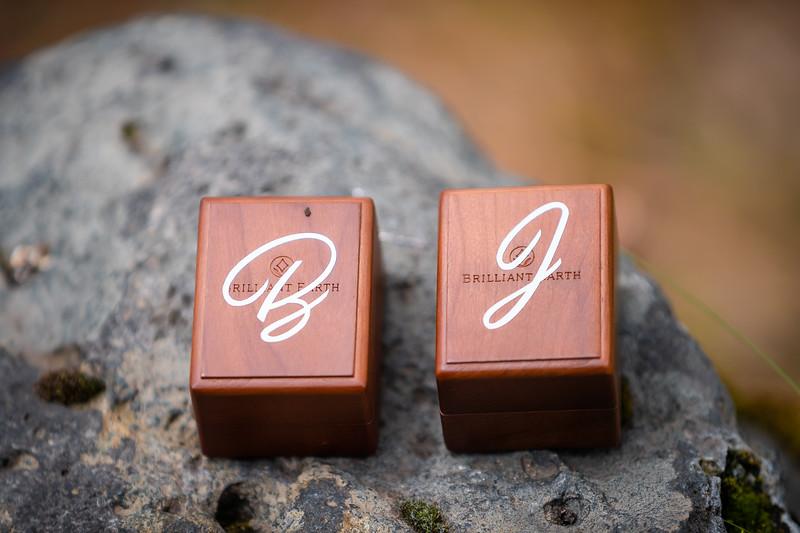 Brina & Jarrand-6