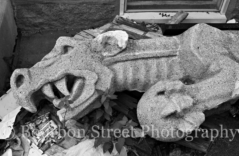 'Fallen from Grace' - Six foot long Gargoyle that fell of the tower of the Bethany Congregational Church in Quincy MA