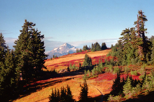 The Pacific Crest Trail winds through autumn meadows in the North Cascades of Washington with Glacier Peak on the horizon