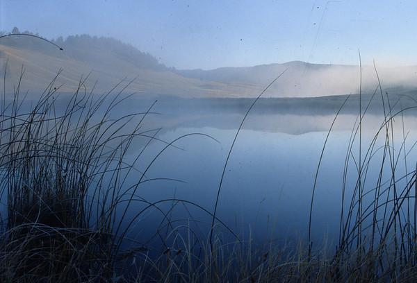 Blacktail Pond