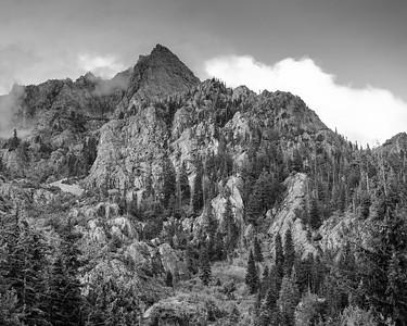 Mt. Ellinor, Washington