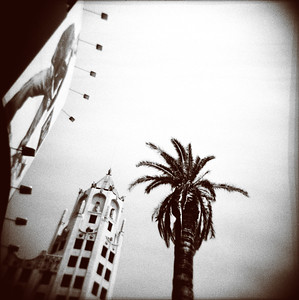 Billboard, Building & Palm