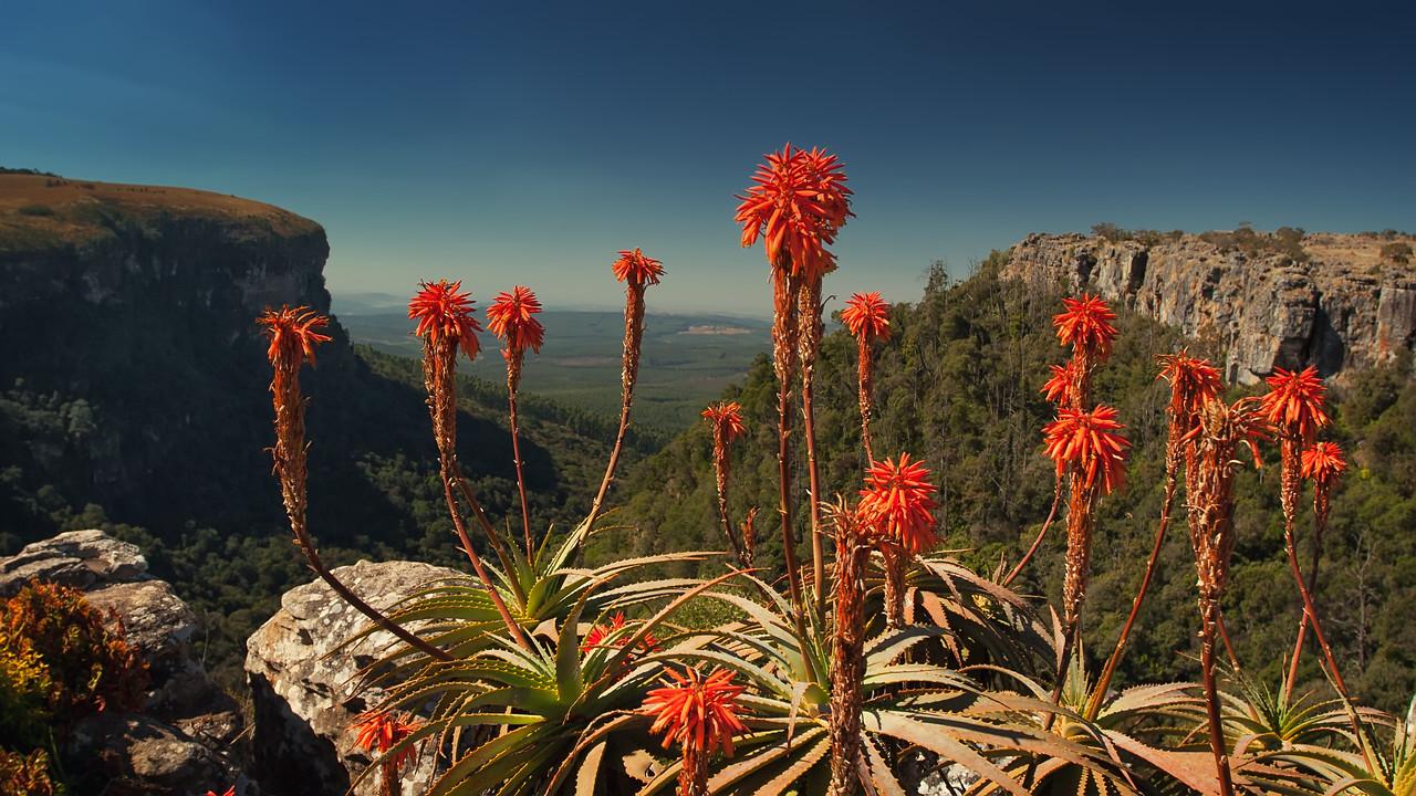 Panorama Ruskamp, Graskop South Africa