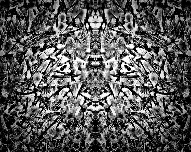 Conference Of Birds : Symmetry Series #24