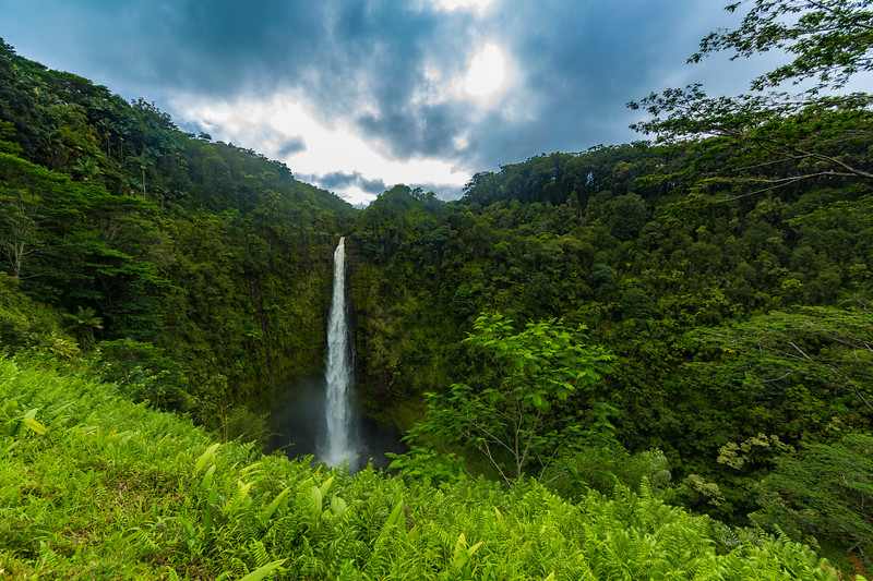 Akaka Falls on Big Island Hawaii just after a rain shower. It stands 442 feet tall.