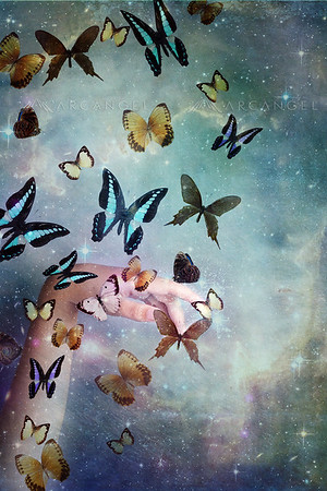 Magical Butterflies