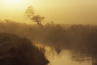 Morning River Padler