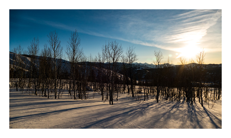 Aspen Sunrise Shadows