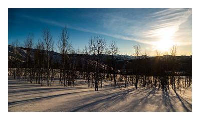Aspen Sunrise Shadows