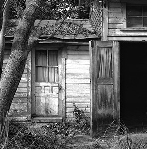 Doors #2