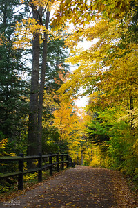 Fall Walk To Tahquamenon Falls
