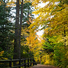 Fall Walk To Tahquamenon Falls