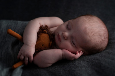 baby boy on grey blanket cuddling lion photographed by newborn photographer highbury