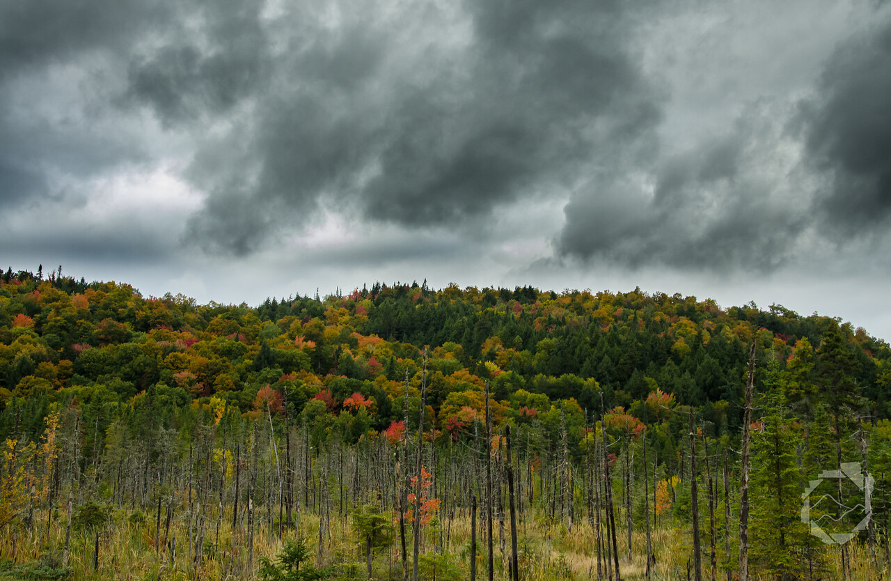Cloudy Fall Day