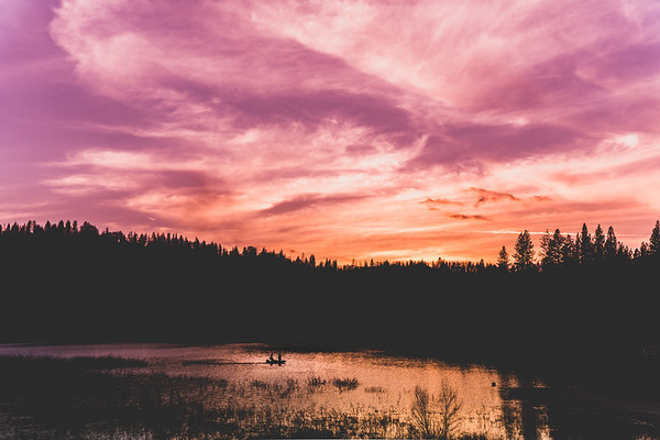 Sunset Silhouette, Bass Lake, CA
