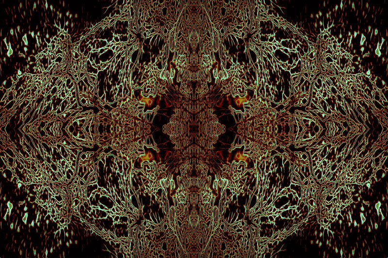 Deep Space Forest : Symmetry Series #7