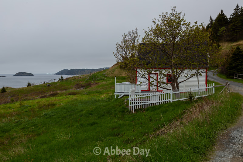 Cribbies Cottage and the last iceberg