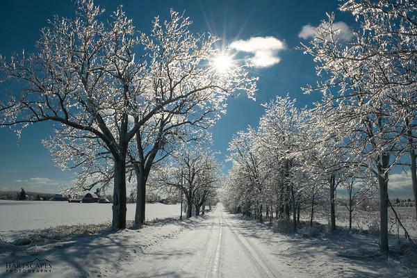 Ice Storm Road